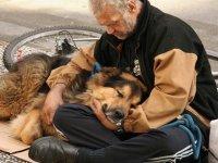 dog-mans-best-friend-2-144bf4